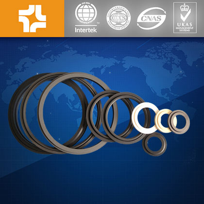 Customized special shape PTFE Gasket seal