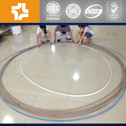 Customized flat PTFE Gasket OD ≤ 3000mm